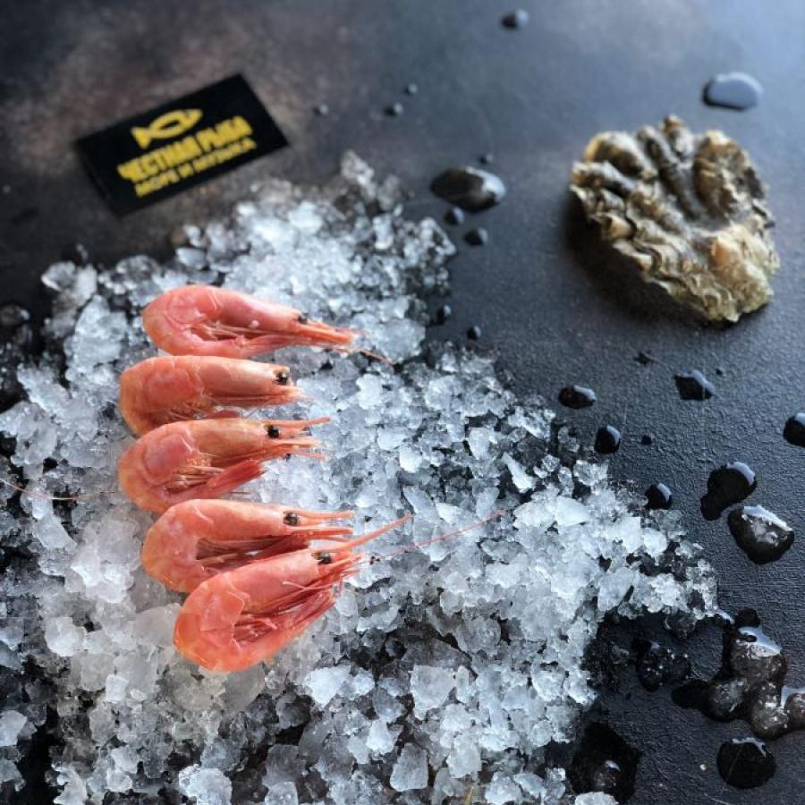 Креветка Магадан рыба 90-120 шт/кг